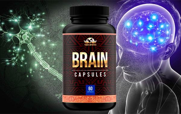 brain vida divina
